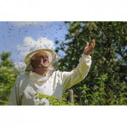 Formations :  Découverte de l'apiculture & Conduite des ruches (27 et 28 mars 2020)