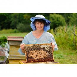 Formations : Découverte de l'apiculture, Conduite des ruches & Elevage des reines (27, 28 mars et 4 avril 2020)