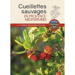 Cueillettes sauvages en Provence Méditérranée