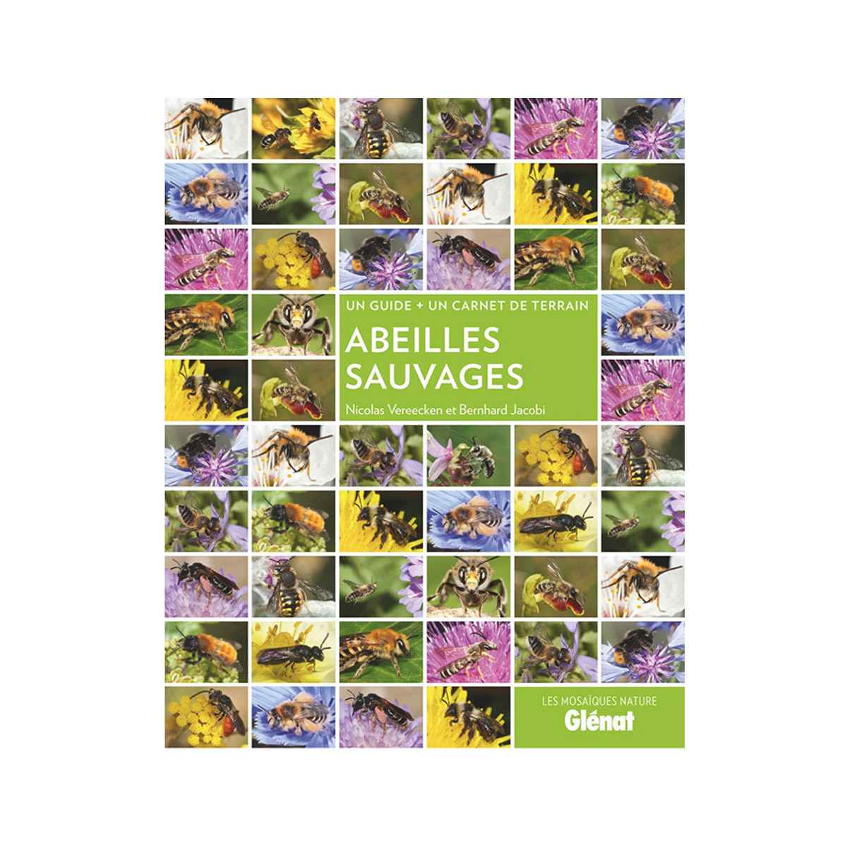 Guide Abeilles sauvages