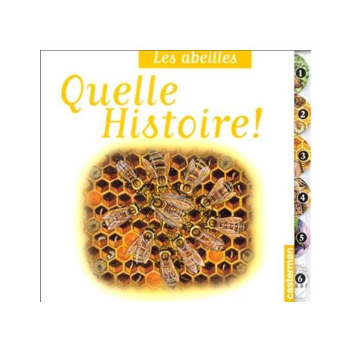 Les abeilles, quelle histoire ! , de Vincent Albouy