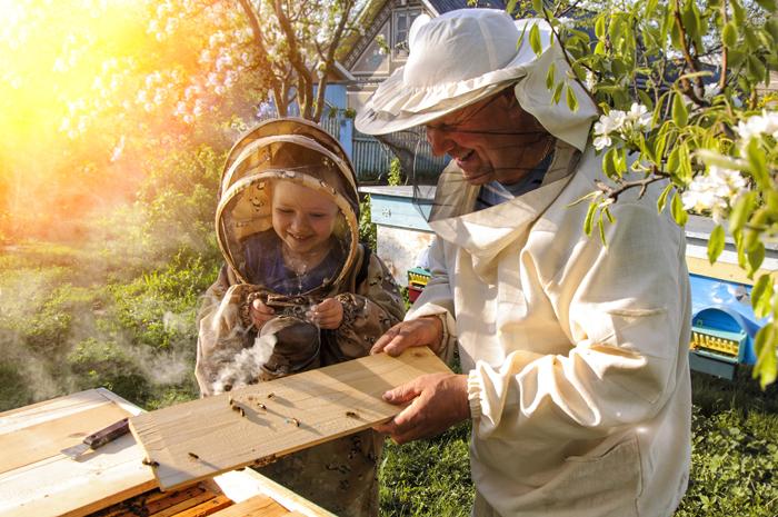 Les vêtements de l'apiculteur