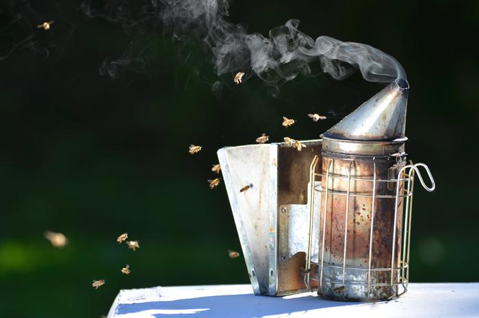 apiculteur quand et comment utiliser l enfumoir. Black Bedroom Furniture Sets. Home Design Ideas