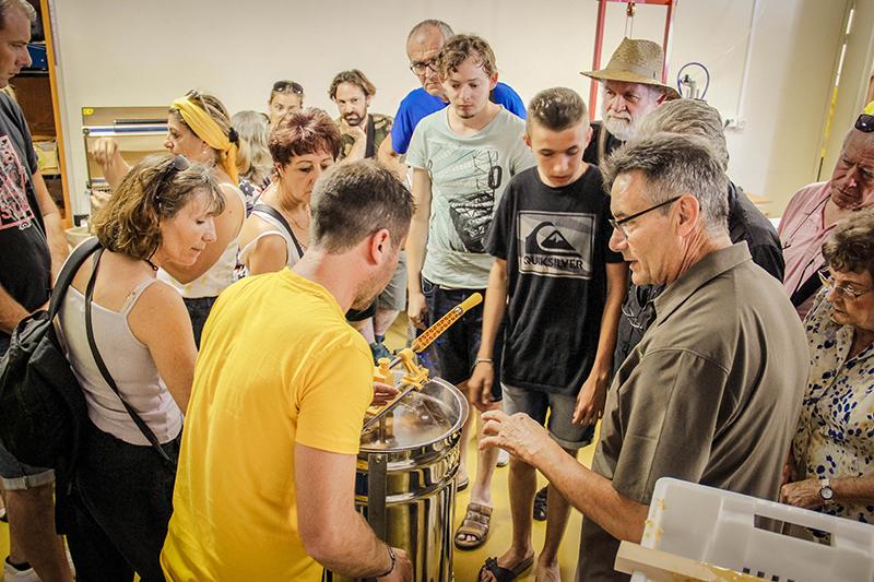 Extraction du miel