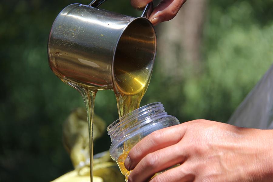 Production de miel en 2016