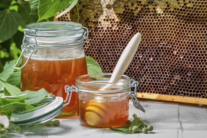 Cadre de ruche & pot de miel