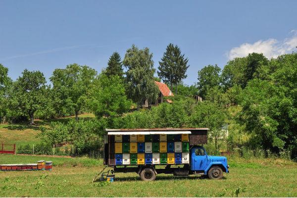 Les apiculteurs voyages