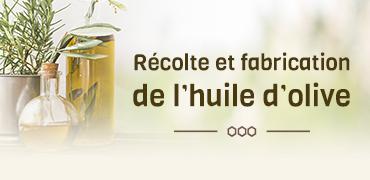 Récolte et fabrication de l'huile d'olive