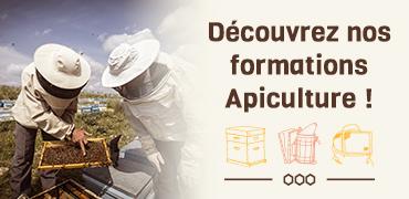 Découvrez nos formations d'apiculteur !