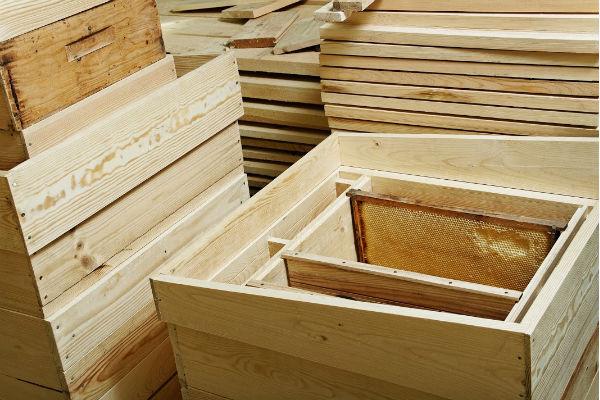 Installation d'une hausse en apiculture