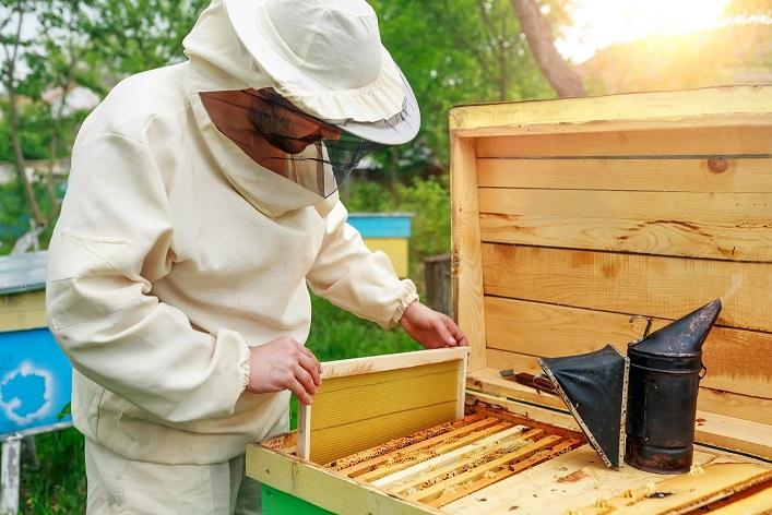 Monter des cadres de ruche