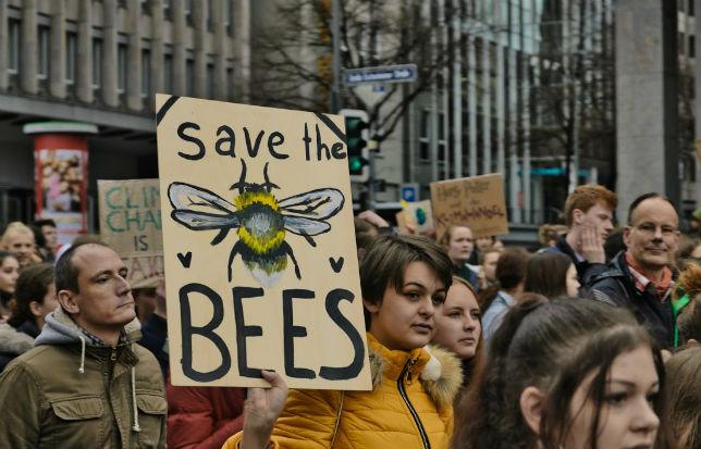 Pétition pour sauver les abeilles